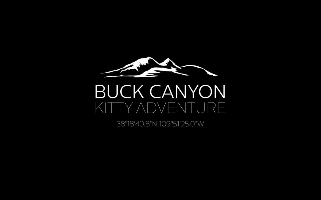 Buck Canyon Kitty Adventure – YouTube